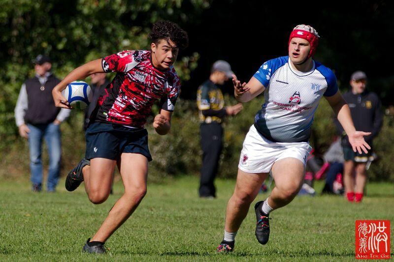 Rugby senior (19+)